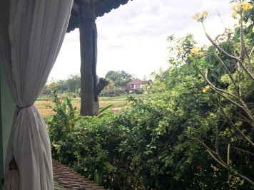 View from the room terrace