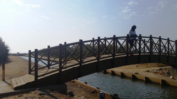 agean-sea-bridge
